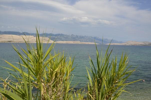 Insel Pag Urlaub (12)