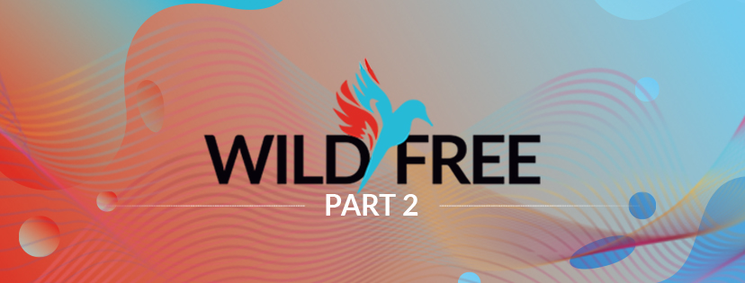 Wild and Free Festival 2019 – Part 2